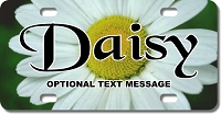 Daisy License Plate for Bikes, Bicycles, ATVs, Cart, Walkers, Motorcycles, Wagons and Vehicles