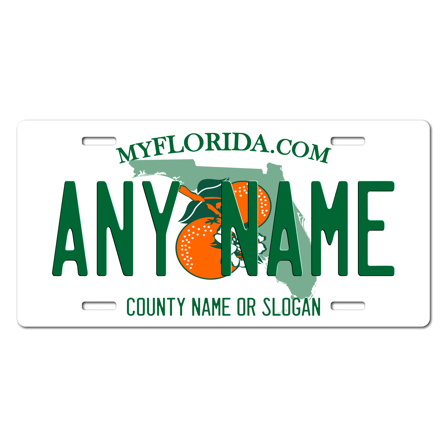 Florida License Plate for Bikes, Bicycles, ATVs, Cart, Walkers, Motorcycles, Wagons and Vehicles Version 2