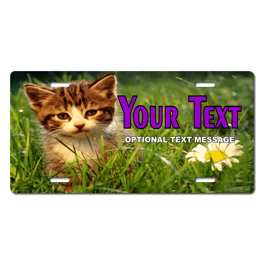 Kitten and Flower Background Plate for Bikes, Bicycles, ATVs, Cart, Walkers, Motorcycles, Wagons and Vehicles