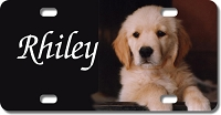 Puppy Background Plate for Bikes, Bicycles, ATVs, Cart, Walkers, Motorcycles, Wagons and Vehicles